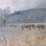 Horses 22X30